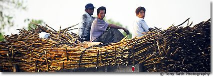 Cane is Still King in the Northern Mayan Villages
