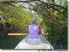 Canoeing on Rio Bravo