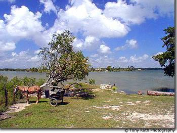 Progresso Lagoon with Caye Coco in background