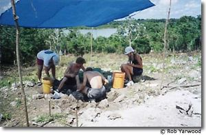 Excavating at Progresso Lagoon